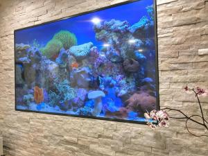 Behind reception is a TV with an aquarium video on a 45 minute loop