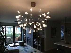 The Moooi chandelier is stunning